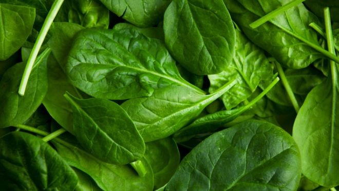 Spinach_Use